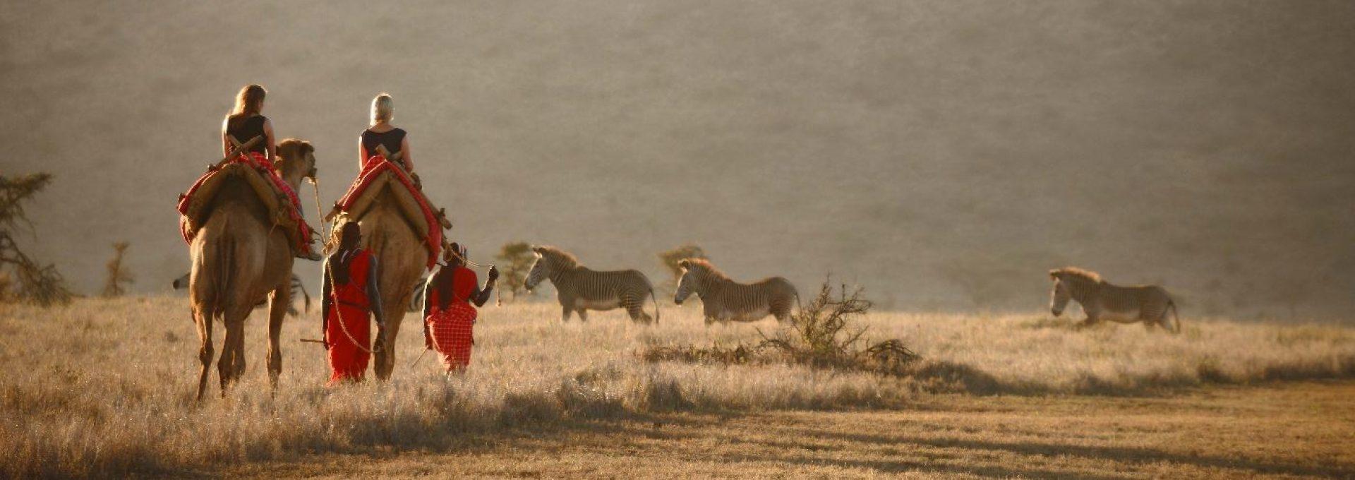 NICE Safaris