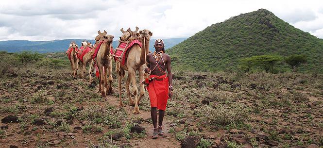 camel-safaris_665